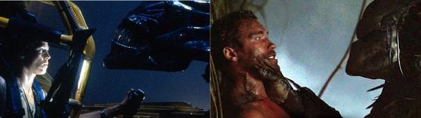 A alien rainha contra sua nêmesis (a fêmea-alfa) e o predador perante seu rival (o macho-alfa)