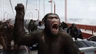 """O jogador Daniel Alves comeu uma banana em desafio ao racismo e a consequência não-intencional do gesto foi o surgimento da campanha """"Somos Todos Macacos"""", que traz à tona a discussão sobre o sentido pejorativo da palavra e do possível (ou não) sentido positivo de nos reconhecermos como primatas"""