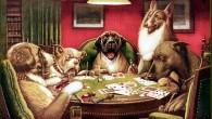 Na hierarquia da inteligência dos animais domésticos, o teimoso burro é o paradigma da camada mais baixa, enquanto o obediente cachorro figura no topo, mas o conceito de inteligência é relativo e variado, e sua representação pode revelar uma ideologia autoritária que incentiva a sujeição e reprime a desobediência