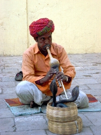 Encantador de serptentes de Jaipur
